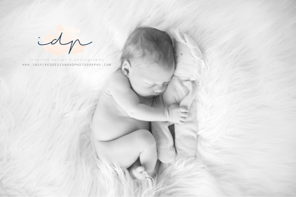 Newborn photography, corcoran MN w5